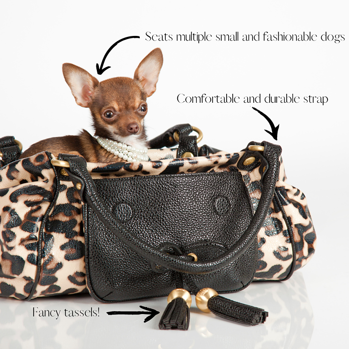 Purse advertisement with features pointed out