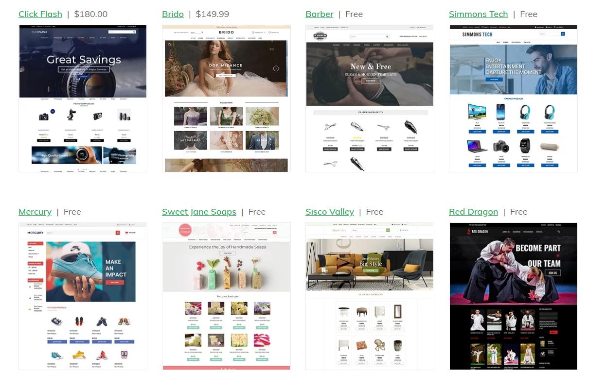 ecommerce website Theme examples