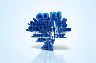 domain-tlds.jpg