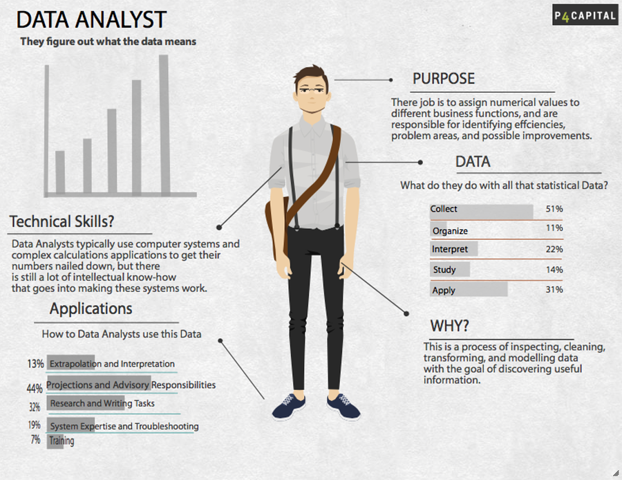 data analyst infographic